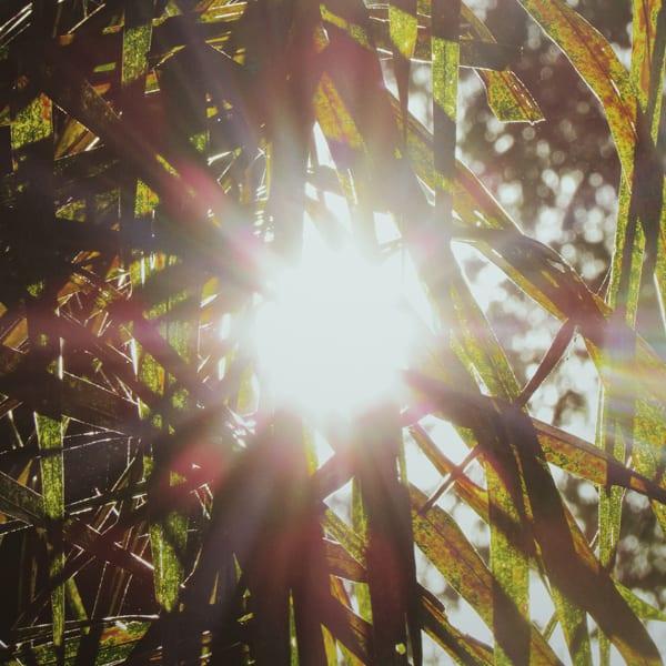 Nazaré Universidade da Luz propicia autopercepção de sua relação com o plano superior