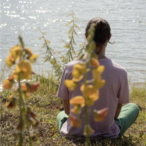 Retiro de Mindfulness Tao – O Cultivo da Vitalidade Autêntica