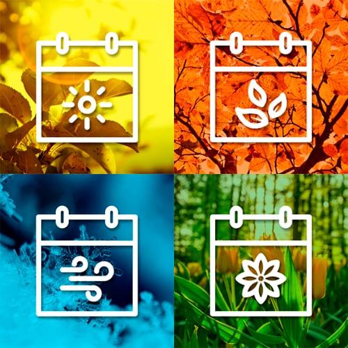 Especialização em Gestão Colaborativa de Projetos Regenerativos