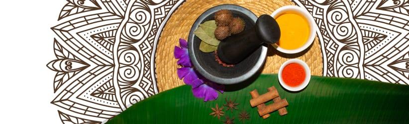 medicina-indigena-brasileira-capa-site-nazare-uniluz