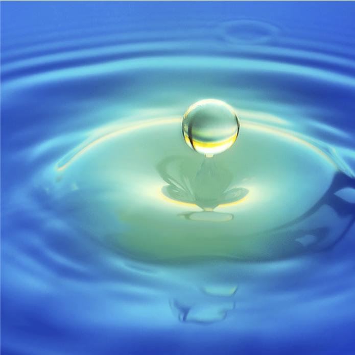 Retiro de Meditação – A Prática da Lucidez Plena